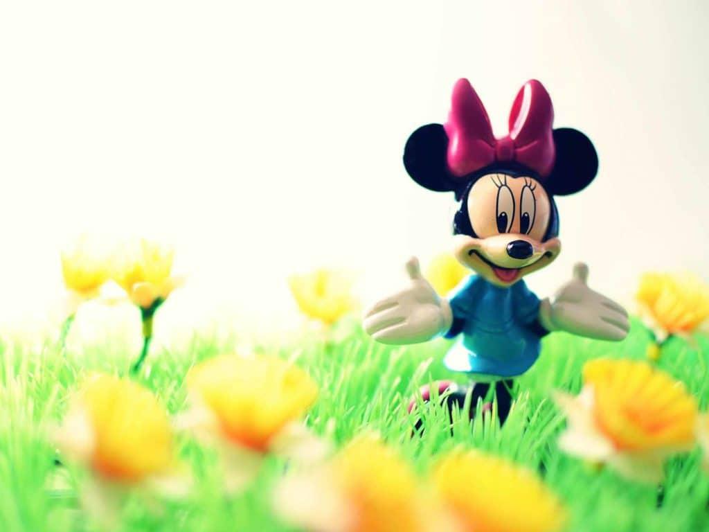 micky-mouse-toys-organizer